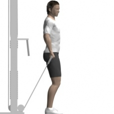 Cable Front Raise, One Arm Starting Position