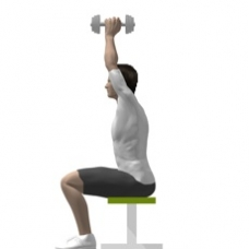 Dumbbell Triceps Extension, Seated Starting Position