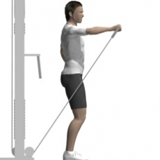 Cable Front Raise, One Arm Ending Position