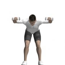External Rotation Bent Over Dumbbell Exercise