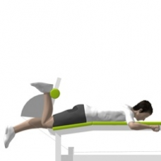 Lever Leg Curl, Lying, Single Leg Ending Position