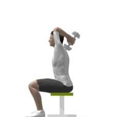 Dumbbell Triceps Extension, Seated Ending Position