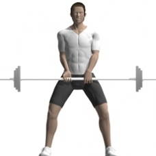 Barbell Dead Lift, Sumo Style Starting Position
