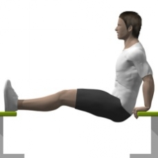 Bodyweight Only Bench Dip Starting Position