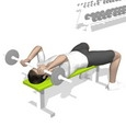 Triceps Extension, Lying