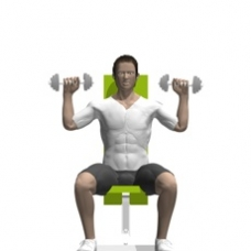 Dumbbell Shoulder Press, Seated Starting Position