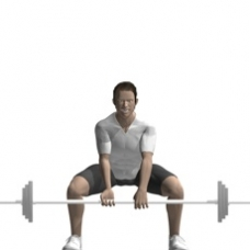 Barbell Dead Lift, Sumo Style Ending Position