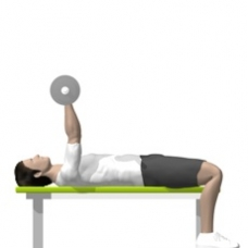 Barbell Triceps Extension, Lying Starting Position