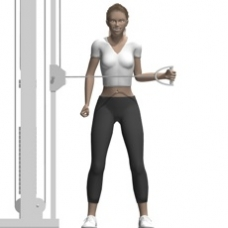 Cable External Rotation, Standing Ending Position