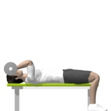 Barbell Triceps Extension, Lying Ending Position