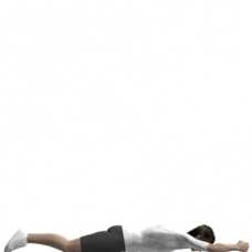 Bodyweight Only Leg Raise, Prone Starting Position