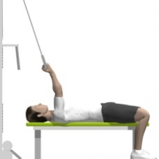 Cable Curl, Supine, One Arm, On Flat Bench Starting Position