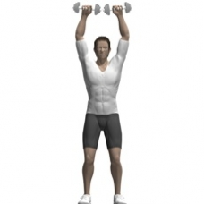 Dumbbell Shoulder Press, Standing Ending Position