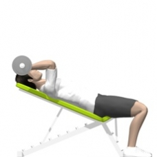 Barbell Triceps Extension, Incline Ending Position