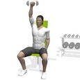 Shoulder Press, Seated, One Arm
