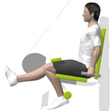 Lever Leg Curl, Seated, Single Leg Ending Position
