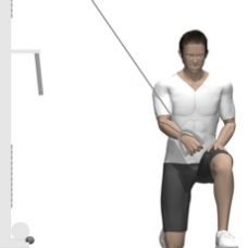 Cable Kneeling Fly, One Arm Ending Position