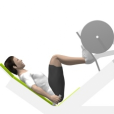 Sled Leg Press 45° Ending Position