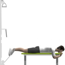 Cable Leg Curl, Prone, One Leg Starting Position