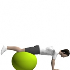Fitness Ball Core Flexion, Prone Starting Position