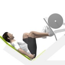 Sled Leg Press 45°, Single Leg Ending Position