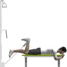Cable Leg Curl, Prone, One Leg Ending Position