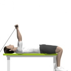 Cable Triceps Extension, Lying Ending Position