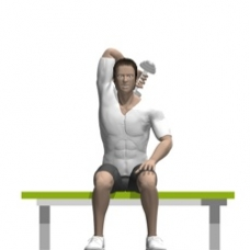 Dumbbell Triceps Extension, Seated, One Arm Starting Position