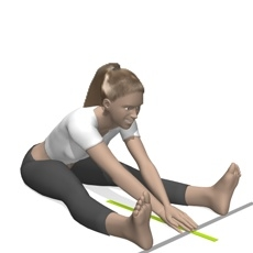 V-Sit Flexibiilty Test   bodytrainer tv
