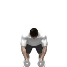 Dumbbell Push-up Fly Starting Position