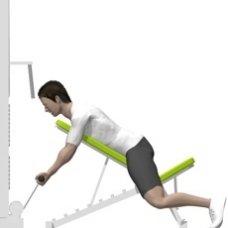 Cable Incline Curl, Prone Starting Position