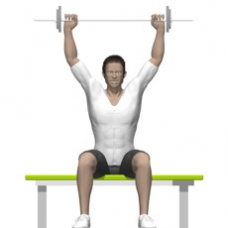 Barbell Behind Neck Press, Seated Ending Position