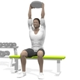 Triceps Extension, Seated