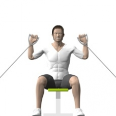 Cable Shoulder Press, Seated Starting Position