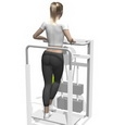 Standing Hip Adduction