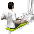 Seated Row, Hip Extension