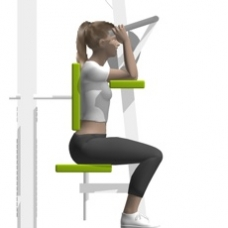 Lever Triceps Extension Starting Position