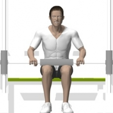 Smith Press Seated Calf Press Starting Position