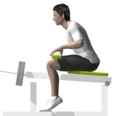 Lever Seated Calf Press Ending Position