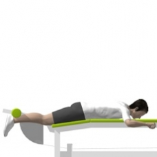 Lever Leg Curl, Lying Starting Position