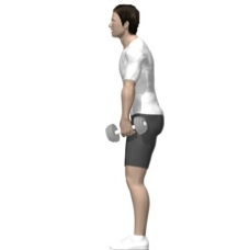 Dumbbell Dead Lift, Stiff Legs Starting Position