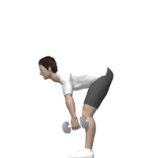 Dumbbell Dead Lift, Stiff Legs Ending Position