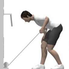 Cable Kickback, Bent-over Starting Position