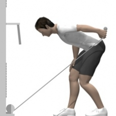 Cable Kickback, Bent-over Ending Position