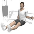 External Rotation, Seated
